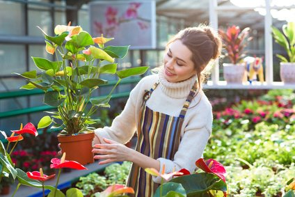 business management software for garden centres